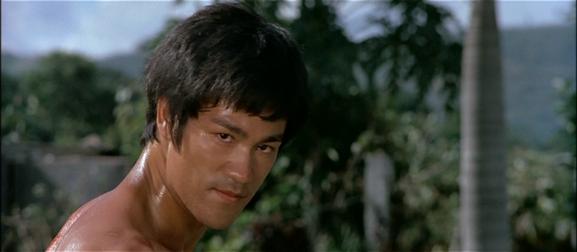 Bruce Lee Changed Martial Arts Movies