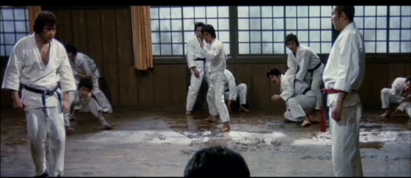 Oyama vs the Karate School