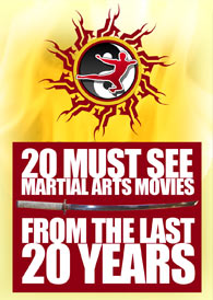 20 Must See Martial Arts Movies from the last 20 years